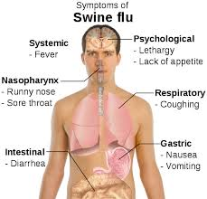 who is at risk from h1n1 swine flu