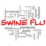 Swine flu H1N1 pandemic